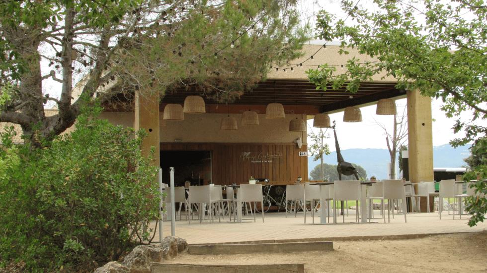 zona-picnic-vilarnau