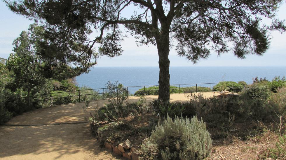 jardin-botanico-vistas-mar