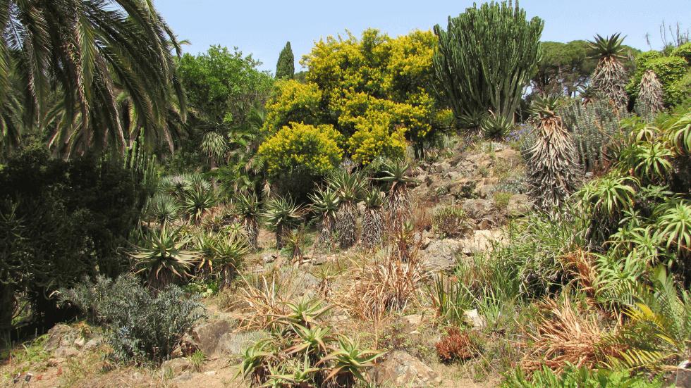 zona-karoo-sudafrica-blanes